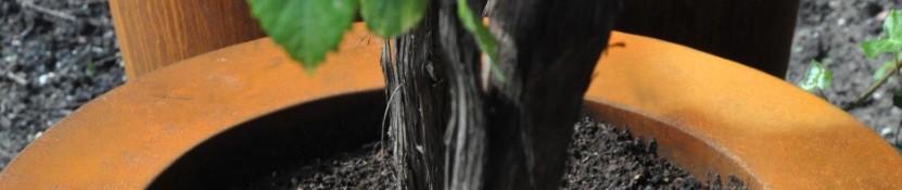 Ronde maatwerk plantenbakken